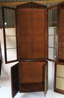 Pair of Regency Library Bookcases Display Cabinets c.1820 (4 of 12)