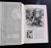 1862 Wild Sports of the World - A Book of Natural History and Adventure by James Greenwood (3 of 6)