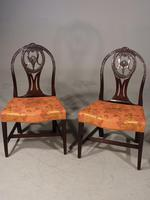 Good Late 18th Century Pair of Mahogany Hooped Back Single Chairs