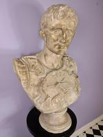 Large Plaster Bust of Augustus (3 of 7)