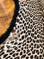 Antique Leopard Skin Rug Taxidermy by Peter Spicer (7 of 18)