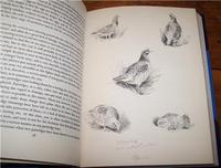 1950 Gun for Company by E. C. Keith, 2nd  Edition, Signed by Illustrator (4 of 4)