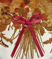 19th Century Victorian Floral Still Life of Pressed Flowers Picture (5 of 12)
