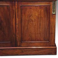 William IV Rosewood Cupboard Bookcase (4 of 9)