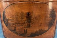 Antique Spa Tea Caddy (3 of 13)