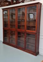 Large Antique Museum Cabinet c.1900 (5 of 7)