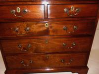 Small George III Cuban Mahogany Chest of Drawers (6 of 8)