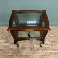 High Quality Victorian Antique Vitrine Display Cabinet (5 of 6)