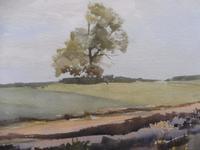 Watercolour Middlebere Heath Listed Artist Ronald Birch (7 of 10)
