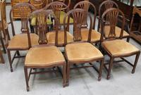 1900's Mahogany Set 8 Hoop Dining chairs with Pop out Seats in Gold