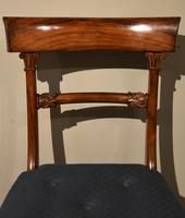Set of Six William IV Dining Chairs (4 of 7)