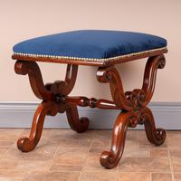 Good Quality 19th Century X-framed Rosewood Stool (10 of 10)