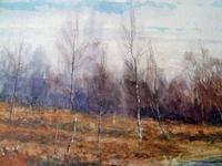 Fine Large  19th Century English School Watercolour - Wooded Marshland Scene. (5 of 5)