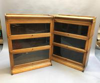 Globe Wernicke Type Bookcase (9 of 13)