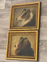 Pair of Scottish 19th Century Oil Paintings Rough Collie Dog Portraits After George Washington Brownlow (8 of 49)