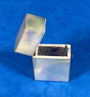 Victorian Mother of Pearl Vesta / Needle Case (10 of 12)