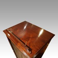 Regency Mahogany Library Cabinet (7 of 10)