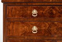 Burr Walnut Serpentine Chest / Cabinet (3 of 9)