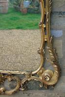 Stunning Twin Plate Rococo Mirror 19th Century (5 of 8)