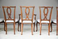 Set of 6 + 1 Continental Dining Chairs (11 of 12)