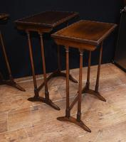 Regency Nest of Tables Antique Circa 1920 (3 of 8)