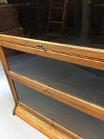 Globe Wernicke Type Bookcase (2 of 13)