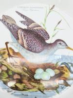 Birds of Britain Casseroles Dish by Portmeirion (2 of 8)
