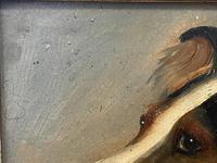 Pair of Scottish 19th Century Oil Paintings Rough Collie Dog Portraits After George Washington Brownlow (47 of 49)