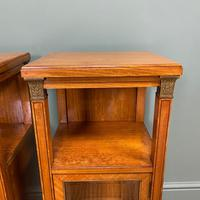 Unusual Pair of Victorian Satinwood Antique Cabinets (2 of 6)