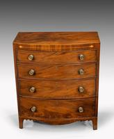 Most Attractive George III Period Mahogany Bow Front Chest of Drawers (2 of 6)