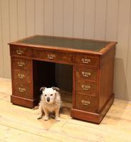 Late 19th Century Burr Walnut Pedestal Desk (10 of 11)