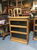 Globe Wernicke Type Bookcase (10 of 10)