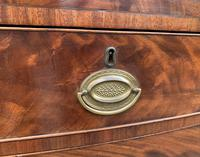 Regency Flame Mahogany Bow Front Chest of Drawers (13 of 17)