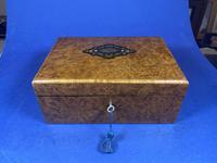 19th Century French Burr Cedar Inlaid Box (6 of 11)