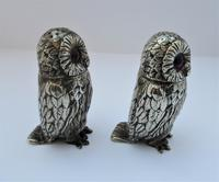 Charming Pair of Victorian EPNS Owl Pepperettes (7 of 9)