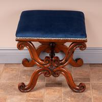 Good Quality 19th Century X-framed Rosewood Stool (6 of 10)