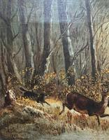 'Chasing The Deer' Beautiful 19th Century Game Hunting Moonlit Landscape Oil Painting (7 of 14)