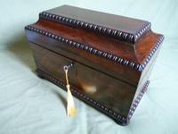 Rosewood Twin Canisters + Bowl Tea Caddy c.1840 (15 of 16)