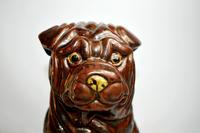 Large Early 20th Century Pottery Shih Tzu (5 of 7)