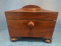 Regency Sarcophagus Rosewood Jewellery Box (8 of 15)