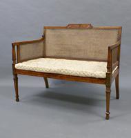 Fine 19th Century Satinwood Bergere Sofa (3 of 6)