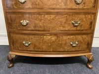 Burr Walnut Bow Front Chest (8 of 12)