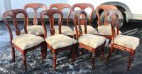 1900's Mahogany Set 8 Balloon Back Dining Chairs with Pop out Seats (2 of 3)