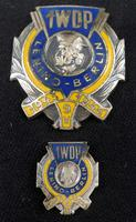WW2 Polish 1st Tadeusz Kosciuszko Infantry Division - Breast Badge & Stick Pin (2 of 5)