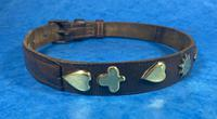 Victorian Brass Mounted Hide Dog Collar (5 of 10)