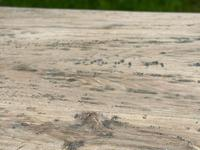 Rustic Bleached Oak French Farmhouse Dining Table (11 of 34)