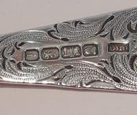 Silver Berry Spoon (5 of 6)