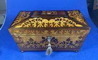 William IV Rosewood Tea Caddy (10 of 13)