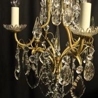 French Gilded Birdcage Antique Chandelier (8 of 8)