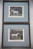 Pair Antique Race Horse Engravings (3 of 11)